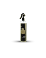 CLEANTECH COMPANY INSIDE CLEANER 500 ml